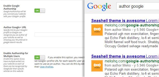 seashell_google_authorship
